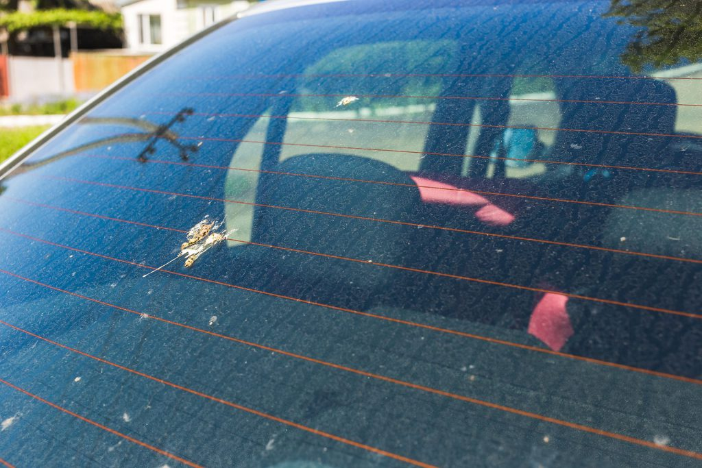 filthy car window